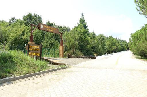 Bayraktepe Tabiat Parkı
