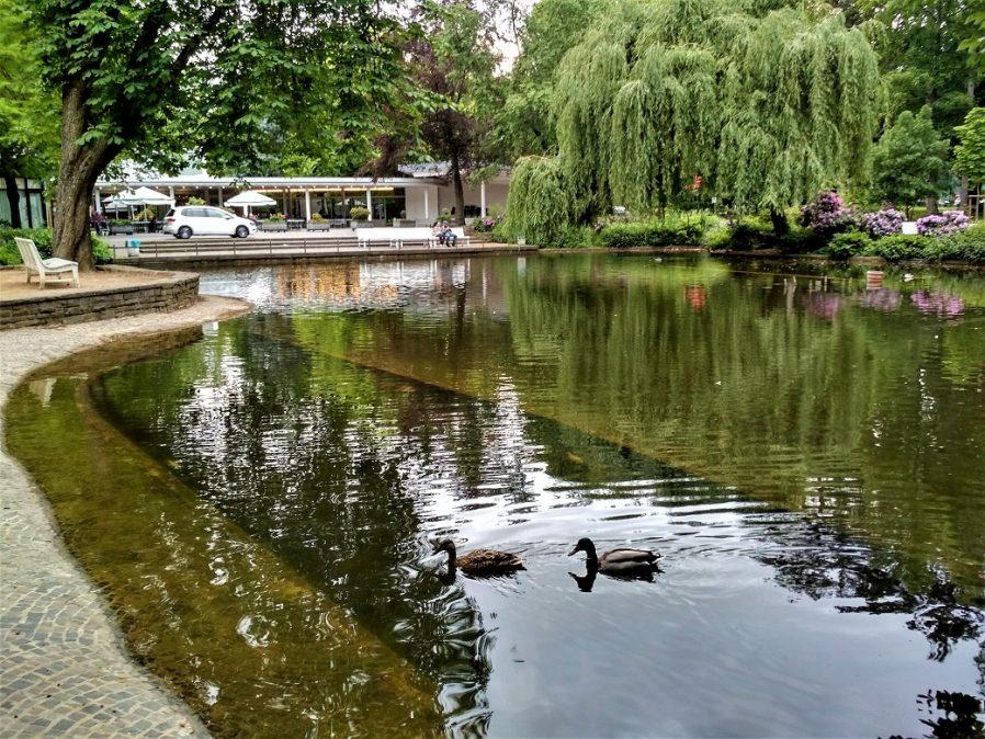 Bad Godesberg Parkı