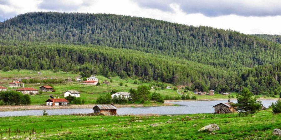 Eğriova Göleti