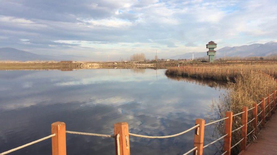 Kaz Gölü