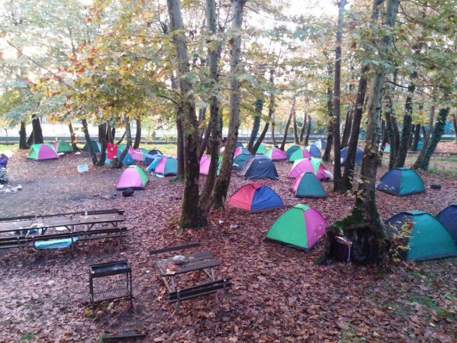 Koru Kamp Alanı