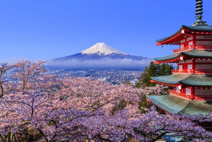 Fuji Dağı'na Gidin