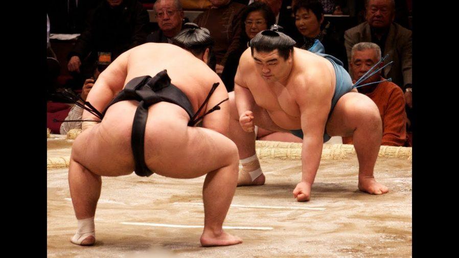 Sumo Güreşine Doyun