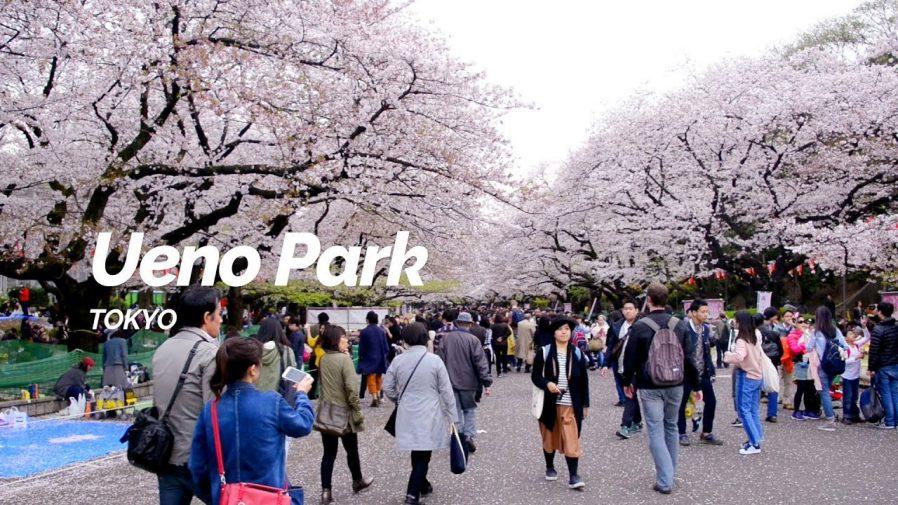 Ueno Parkı