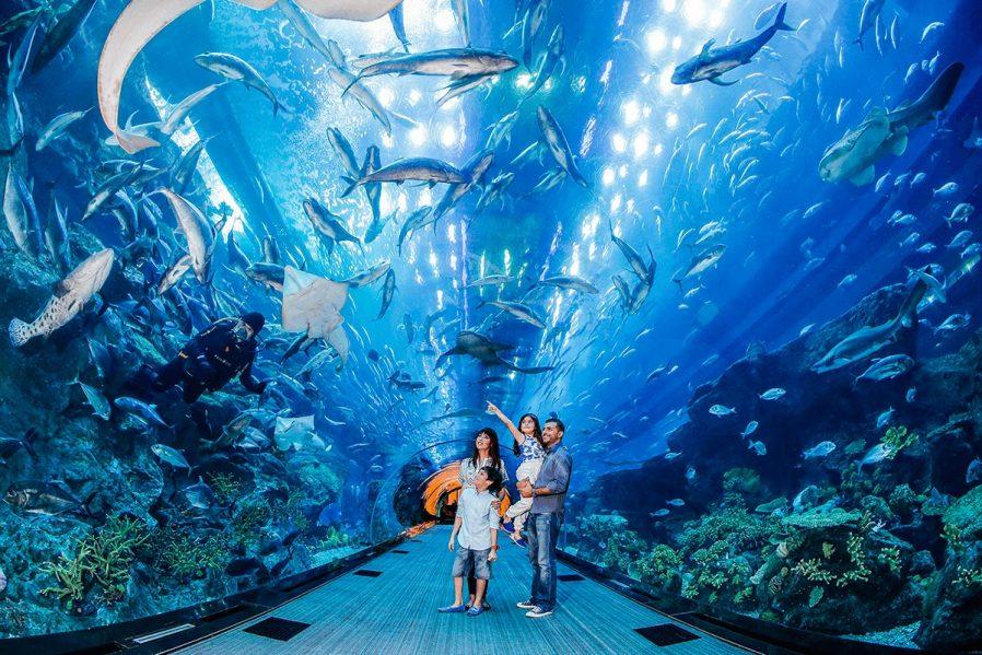 Dubai Akvaryumu'nda Keyifli Zaman Geçirin