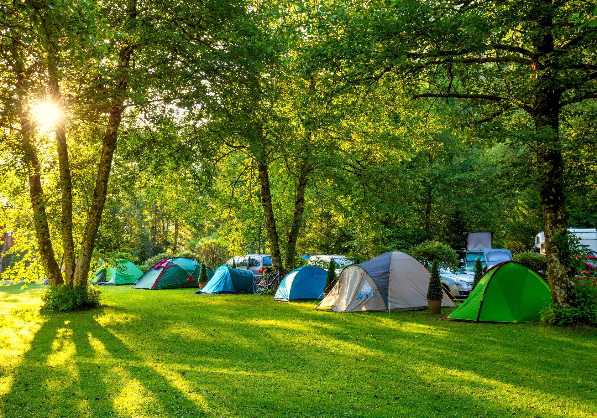 Gelibolu Kamp Alanları