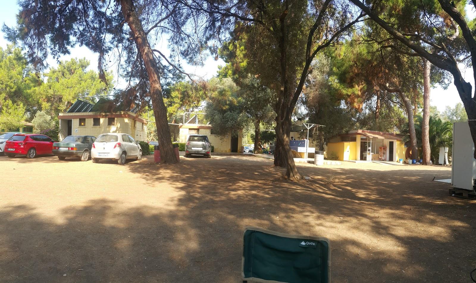 Gümüldür Kamp Alanları