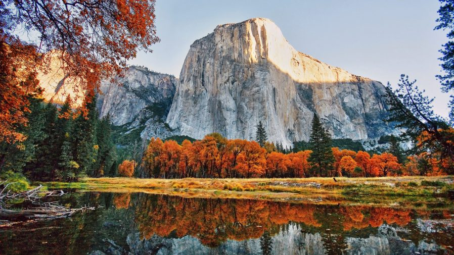 Yosemite Ulusal Parkı'nı Görün