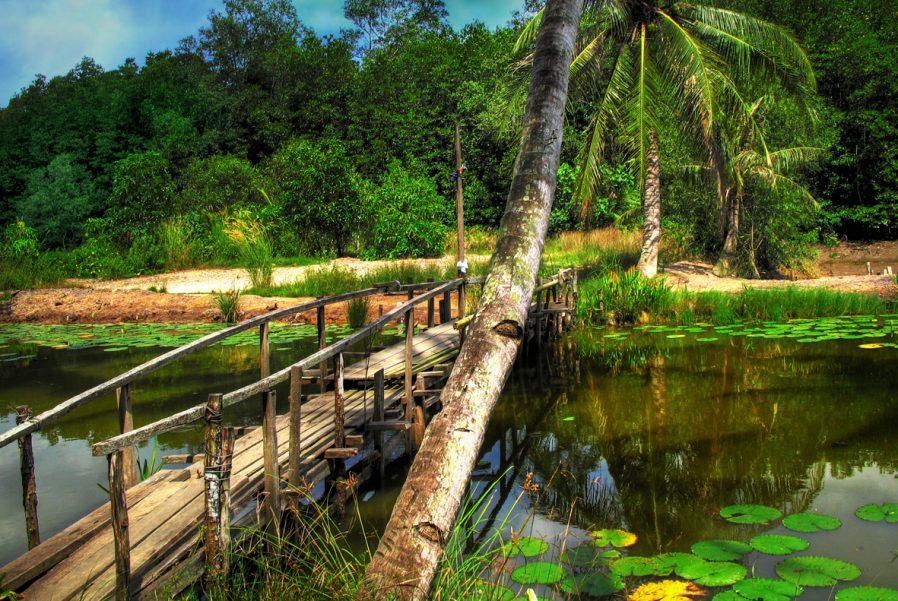 Pulau Ubin Adası'na Kaçın