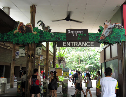 Singapur Hayvanat Bahçesi