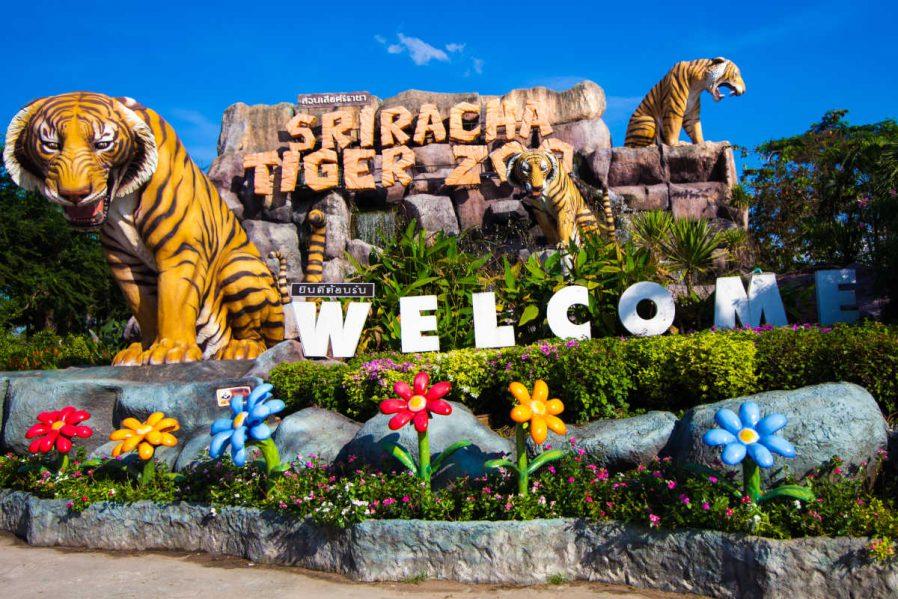 Sriracha Tiger Zoo (Sriracha Kaplan Hayvanat Bahçesi)